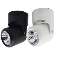 10pcs 10W Cold White and 10pcs 20W Cold White COB Led downlights Surface Mounted  AC85-265V