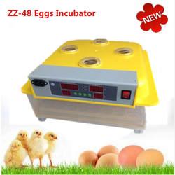 Новый 220-240 В Авто выводные Небольшого Домашнего Использования яиц инкубатор автоматические яйца поворотным птицы, Инкубационных Машина