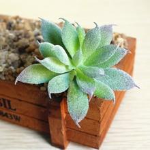 Пластиковые искусственные мясистые растения растение кактус эчеверия цветок зеленый растение трава пустыня искусственные растения пейзаж домашний офис Декор