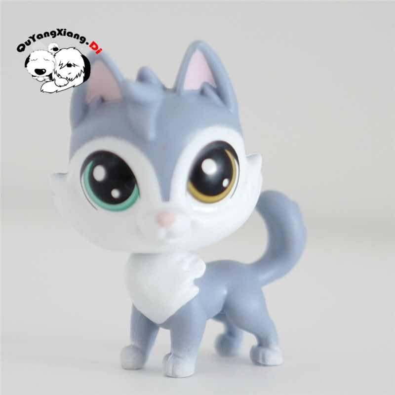 CWM072 зоомагазин, животные серый синий кукла в виде котенка фигурка