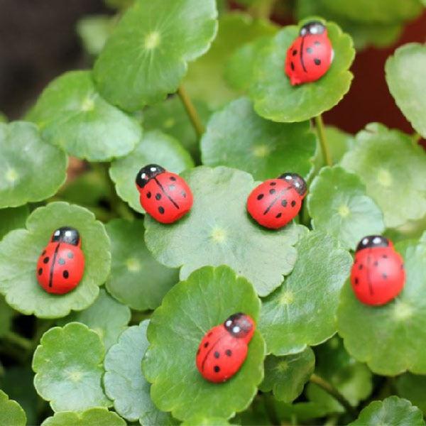 50Pieces Mini Resin Ladybug Garden Pots Miniature Succulent Plants Decoration Fairy Garden Figurines Micro Landscape Crafts P15