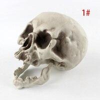 Настоящий череп #3