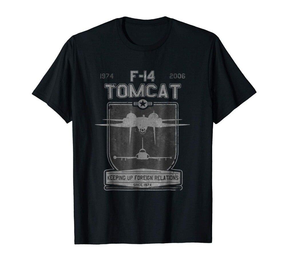 F-14 Tomcat Jet