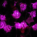 4 M 40LED Rose Flor LED String Luzes a Pilhas do Evento da Festa de Aniversário Do Casamento Do Natal Iluminação Da Decoração Casamento