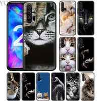 Schwarz Silikon Fall für Honor 20 8X10 10i 8S 8A Lite Pro Y9 Y7 Y6 Y5 Prime 2019 weiche Telefon Caso Abdeckung Katze Blick Nette