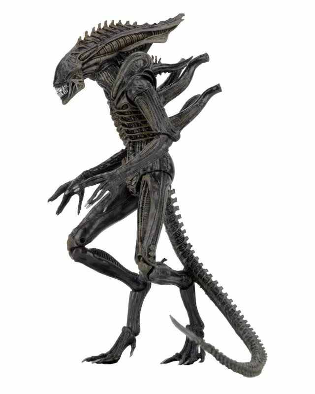 Aliens vs Predator серия Aliens Convention Defiance Ламберт компрессионный костюм Xenomorph Воин инопланетянин игрушка фигурка