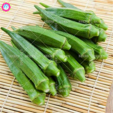 20pcs Chinese organic okra seeds Real Non-GMO green vegetable seeds Edible planting for spring farm home garden supplies 95%