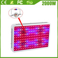 Double Chips LED Plant Lamp Fitolampa 2000W 10W Grow Light Led Full Spectrum LED Plant Grow Light Aquarium Plant Led Light