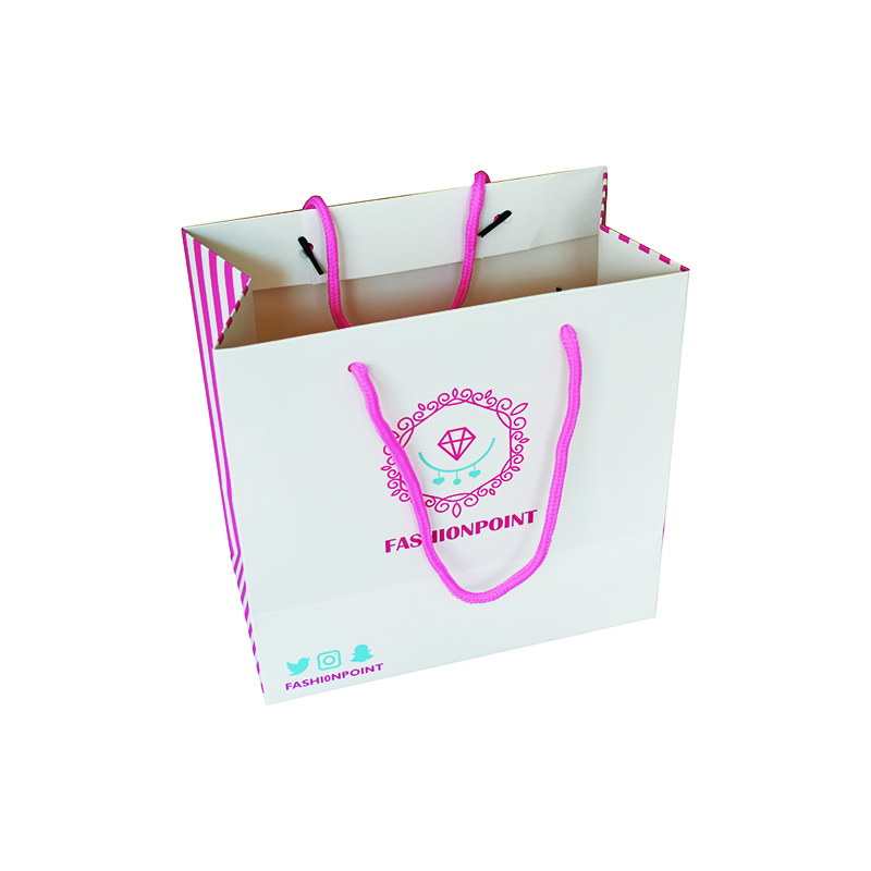 Zuoluo Customized Paper Gift Shopping Bag With Factory Price From China