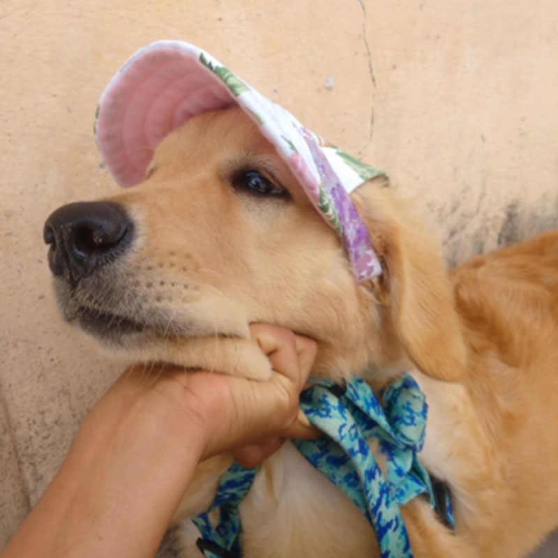 หมวกสัตว์เลี้ยงที่มีรูหูเบสบอลหมวกสำหรับสุนัขขนาดกลางขนาดใหญ่สุนัขฤดูร้อนหมวก Sun หมวกเดินป่ากลางแจ้งผลิตภัณฑ์สำหรับสัตว์เลี้ยง