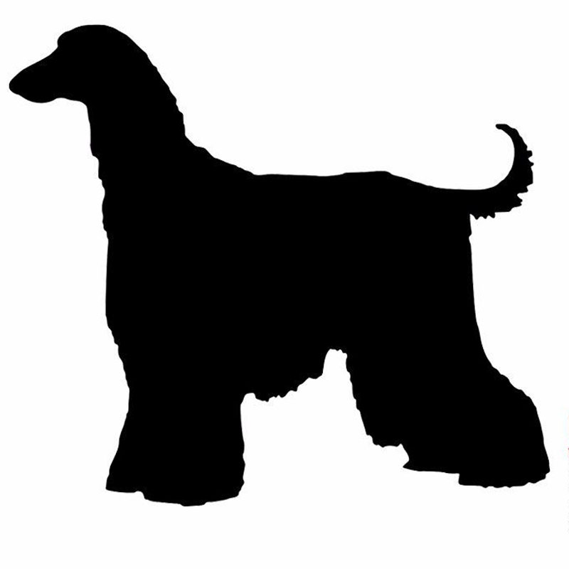 15.2*13.5CM Afghan Hound Dog Cartoon Animal Car Body Decoration Stickers Motorcycle Accessories C6-1688