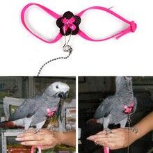 Попугай Регулируемая шлейка для птицы поводок Регулируемый нейлон Животное попугай шлейка для птицы поводок многоцветная мягкая