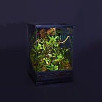 Geometric glass box lizard snake turtle chameleon breeding reptile box ecological landscaping rainforest tank terrarium large