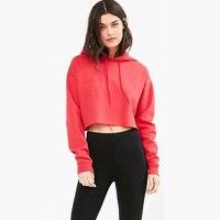 HARAJUKU Women Simple Style Long Sleeve Pullover Hoodies Women Streetwear Short Length Loose Hoodies