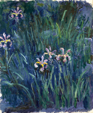 Oil Painting Wall art Lilac Irises by Claude Monet canvas painting Home Decoration Painting Reproduction Art Painting Suppliers claude monet japnese bridge painting reproduction wall art painting living room decoration photo to canvas oil painting supplie