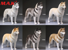 1/6 scale siberian Husky dog model German shepherd with collar anime statue for 12 inches action figure accessories collections elvan люстра elvan lu00098 8