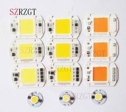 LED COB رقاقة 110 فولت 220 فولت 9 واط 10 واط 20 واط 30 واط 50 واط LED لمبة مصباح مدخلات الذكية IC كشاف ضوء الأضواء