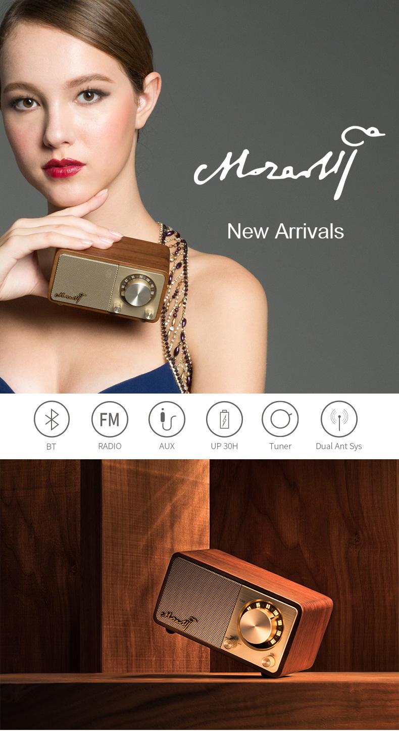 Sangean Mozart portable bluetooth fm radio speaker wireless speaker 1
