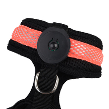 Cat – Dog Collar Harness Vest Led Light Up