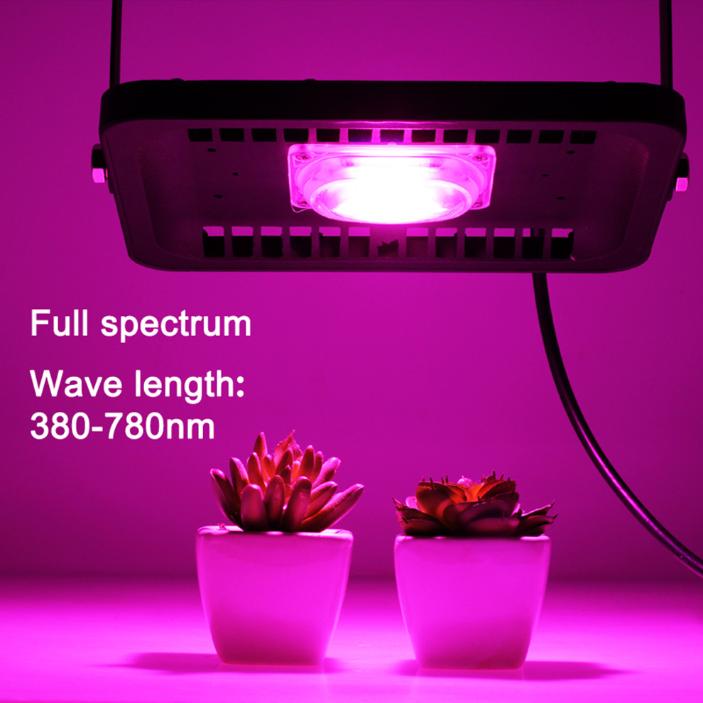 [DBF] LED Grow Light Lamp Full Spectrum Phyto Lamp COB Led Grow Flood Light Indoor Plant Lamp For Plants Vegs Hydroponic Syste