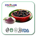 Mulberry Powder,Mulberry Fruit Powder,Mulberry Fruit Juice Powder