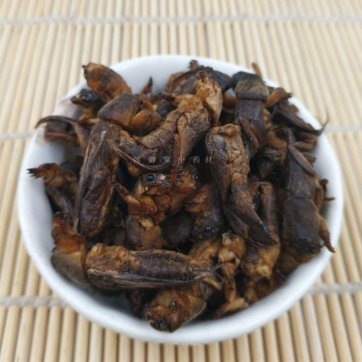 Wild Dried Mole Cricket 250g Per Pack