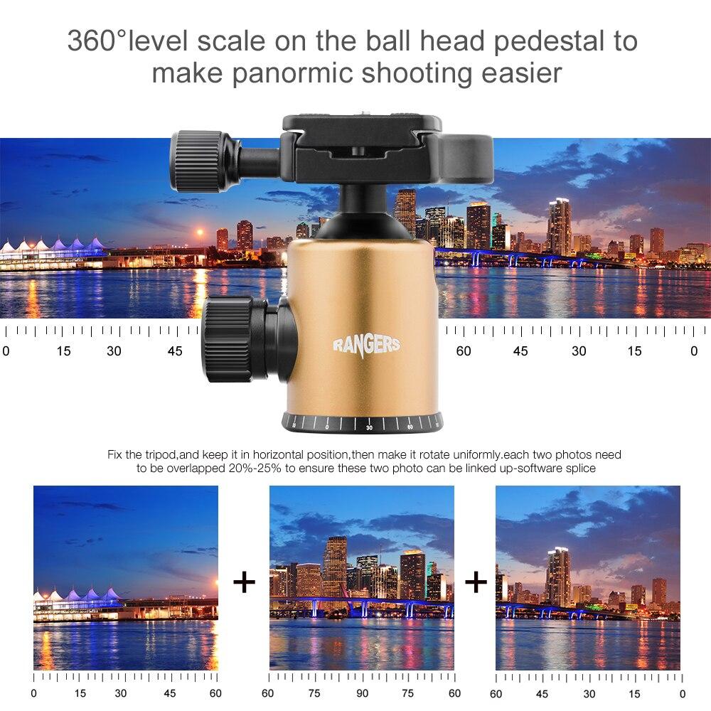 Рейнджерс Профессиональный Портативный 360 градусов Ballhead Штатив мяч Головой переходная пластина винт для DSLR Видеокамера Шампанское RA096