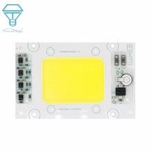 Полная мощность 50 Вт AC220V-240V светодиодный ССБ Водонепроницаемый светодиодный умный IC большая светящаяся лампа для поверхности для наружного внутреннего прожектора для DIY светодиодный