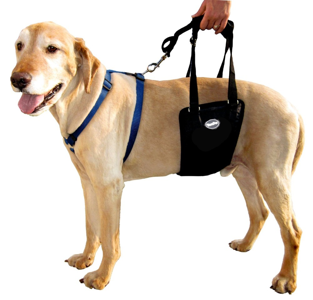 New Dog Rear Assist Sling Mobility Support Rehabilitation