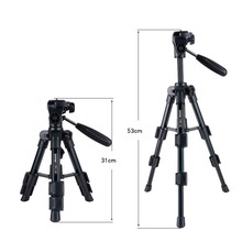 Zomei Lightweight Q100 CK30 Mini Travel Tabletop table tripod Desktop Tripod for Canon Nikon DSLR Camera and Mobile Phone