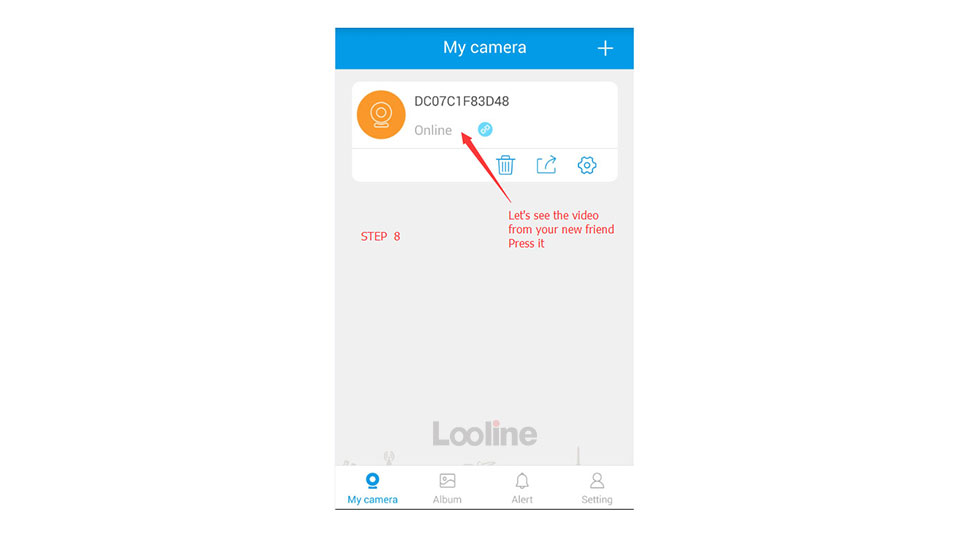 looline_16