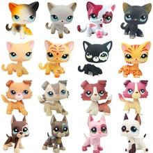 лучшая цена real rare pet shop lps toys standing little short hair cat pink Black old original dog dachshund collie great dane free shipping