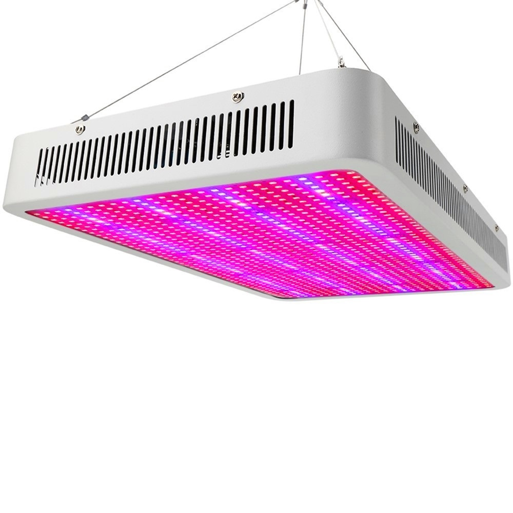1600W 1200W 800W 300W LED Grow Light best Full Spectrum for seeds flowers indoor plants Hydroponic systems indoor greenhouse spider farmer dimmable led 300w grow light full spectrum hydroponic systems for seeds indoor plants in agricultur greenhouse