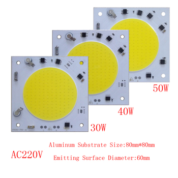 10PCS/LOT COB LED Lamp Chip 30W 40W 50W Bulb 220V Smart IC Driver Cold White Spotlight Floodlight