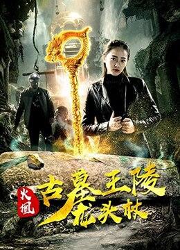 《火凰之古墓王陵龙头杖》2018年中国大陆剧情,犯罪,悬疑电影在线观看