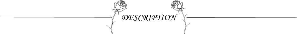 DESCRIPTION 4