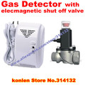 Standalone natural / LPG gas detector with DN15 electrovalve for automatic valve shut off