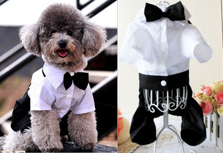 Western Style Male Wedding Dog Suit With Tie White Clothing For Dogs Puppy  Pet Corduroy Dog Clothes Chihuahua Teddy-in Jumpsuits & Rompers from Home &  ...