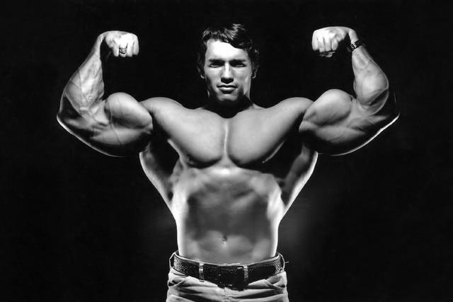 DIY Frame Arnold Schwarzenegger Superstar Fitness Bodybuilder Poster Fabric Silk Black And White Print Great