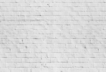 Laeacco White Brick Wall Portrait Solid Color Photography Backgrounds Customized Photographic Backdrops For Photo Studio