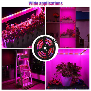 Image 5 - 5 メートル LED フィトランプフルスペクトル LED ストリップライト 300 Led 5050 チップ LED Fitolampy ためのライトの成長温室水耕植物