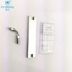 Image 5 - Détartreur dentaire à ultrasons, clé à embout endo, lime en U, en acier inoxydable, pour sécateur de bois DTE SATELEC GNATUS