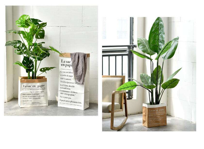 piso planta bonsai flor casamento decorativo vaso