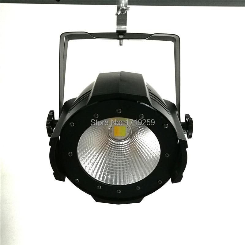 10 pcs/lot High Quality COB LED Par Light White + Warm white 100w cob LED Par Can light for disco stage bar club
