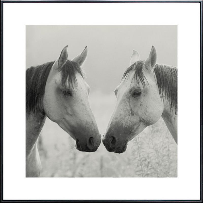 Holland Leinwand Malerei moderne Ölgemälde Tier Pferd Kopf - Wohnkultur - Foto 4