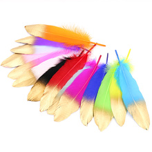 Best Selling Natural Goose Feather 15-20CM Various Colors Feathers Party Decorations Christmas Layout Supplies