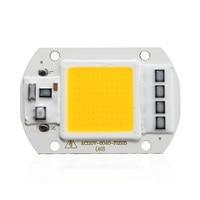 10pcs LED Chip AC110/220V COB 50W No Need Driver Input Smart IC High Lumen LED Bulb Lamp For DIY Floodlight Spotlight