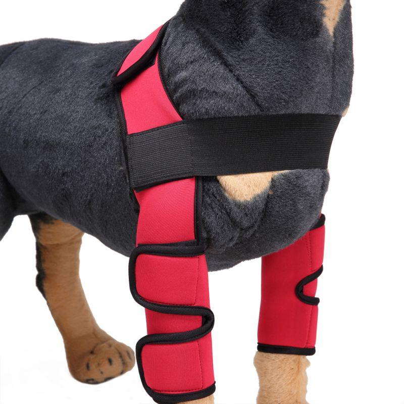 Home & Garden 1 Pcs Pet Large Dog Soft Adjustable Reflective Explosion-proof Backlit Harness Collar Pet Walk Out Hand Strap Vest Collar
