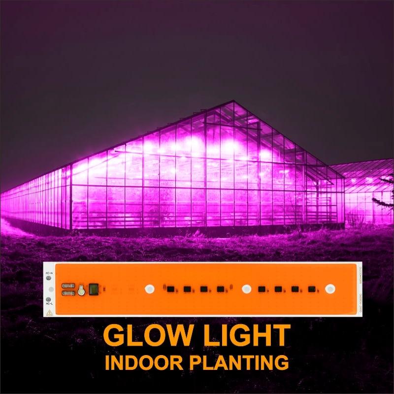 Светодиодный чип COB 30 Вт 50 Вт 80 Вт AC220V светодиодный светильник для выращивания растений полный спектр фитолампа для комнатных садовых растений гидропоника, шатер для выращивания