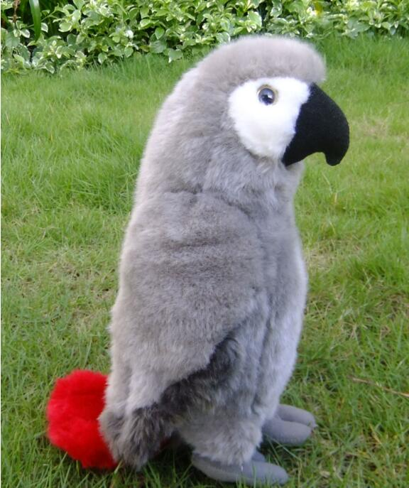 Plush Gray Parrot Doll Toys Simulation Wild Africa Macaw Dolls Toy Rare Home Decoration 2016 hot selling 22cm the first sofia princess dolls toys sophia clover cartoo toys rabbit plush doll